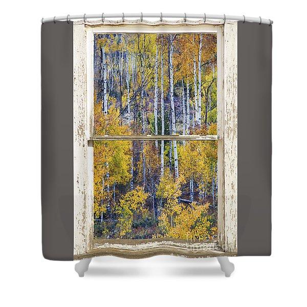 Aspen Tree Magic Cottonwood Pass White Farm House Window Art Shower Curtain