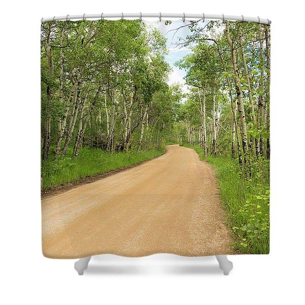 Aspen Way Shower Curtain