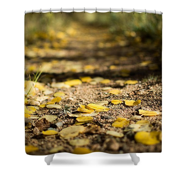 Aspen Leaves On Trail Shower Curtain