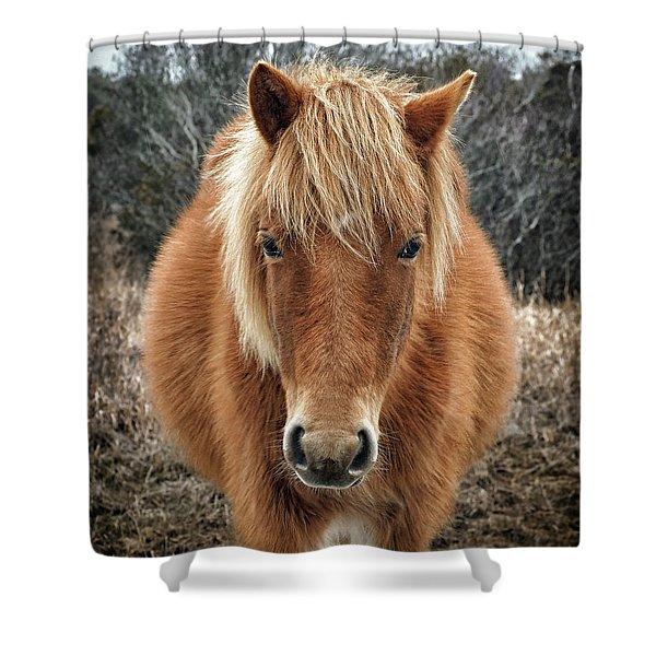 Assateague Island Horse Miekes Noelani Shower Curtain