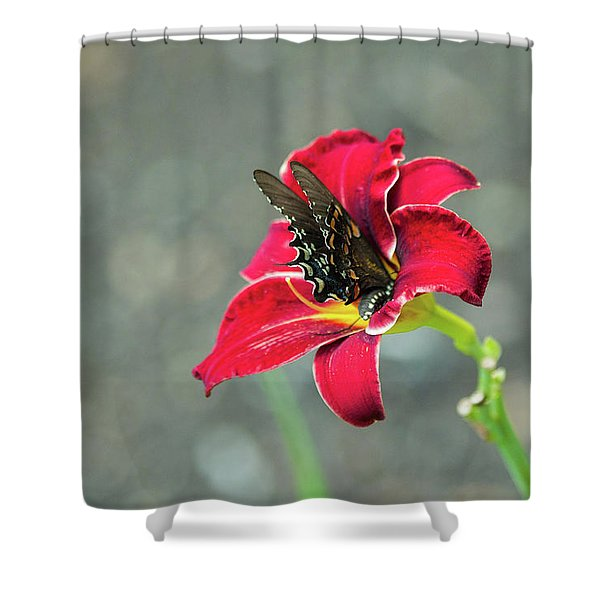 At One With The Orchid 2 Shower Curtain
