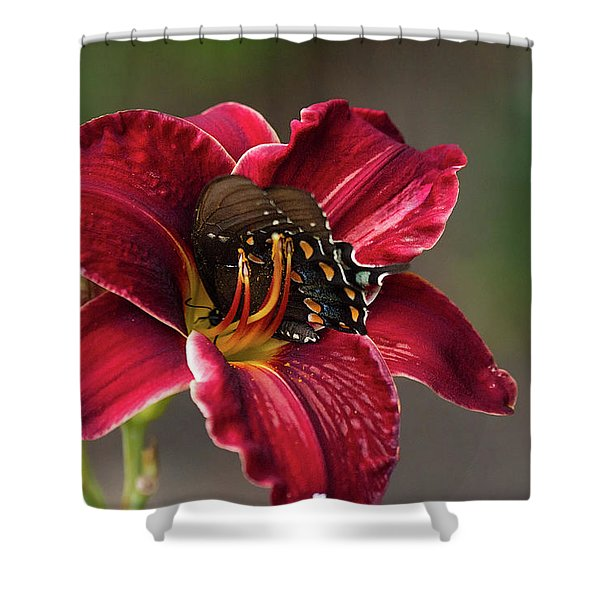 At One With The Orchid Shower Curtain