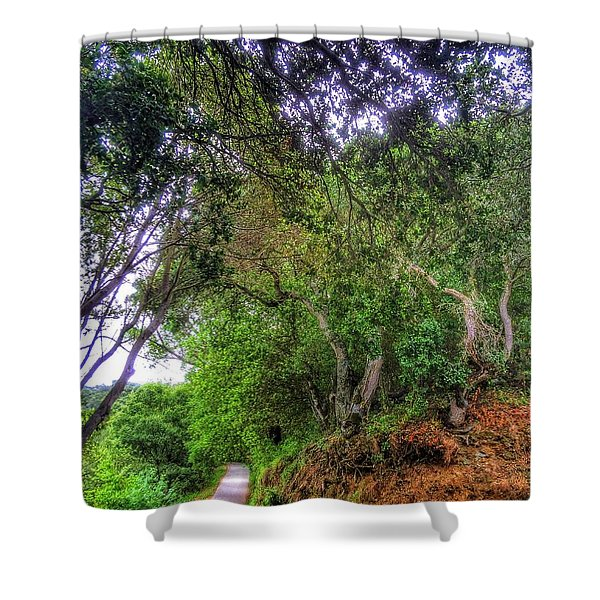 At The Curve In The Road Shower Curtain