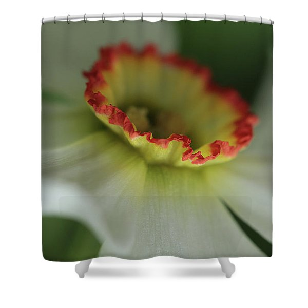 At The Edge Of The Crater Shower Curtain