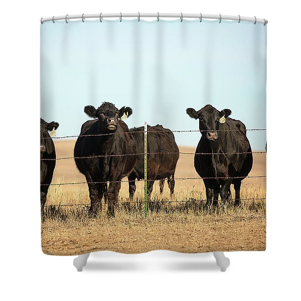 At The Fence Shower Curtain