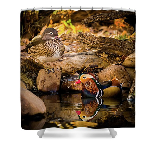 At The Waters Edge - Mandarin Ducks Shower Curtain