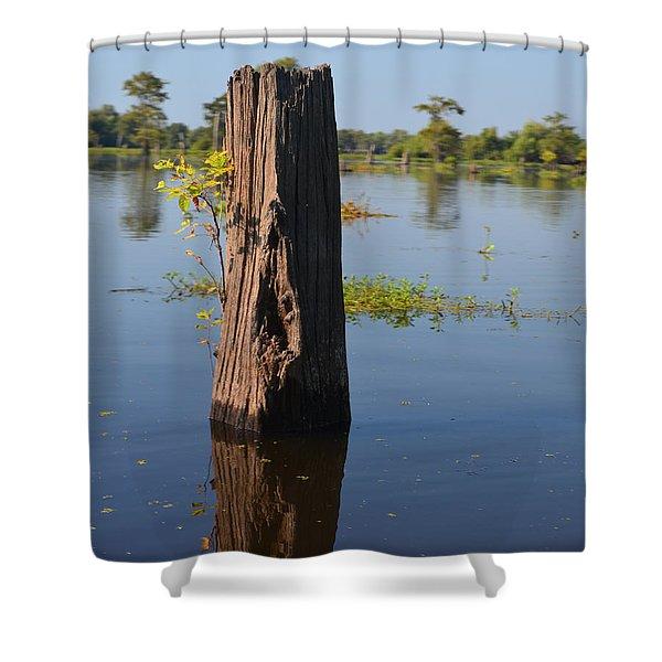 Atchafalaya Basin 22 Shower Curtain