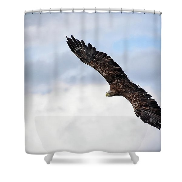 Attack Run Shower Curtain