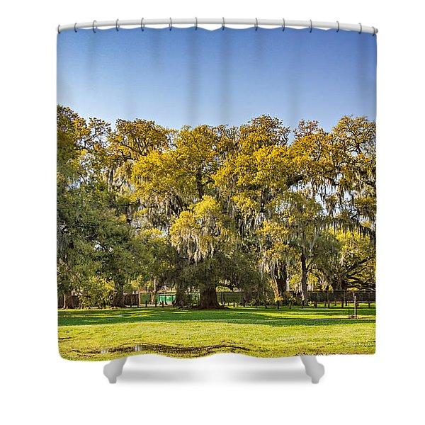 Audubon Park New Orleans Shower Curtain