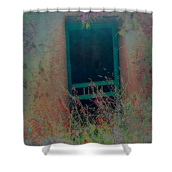 Augustines Door Shower Curtain