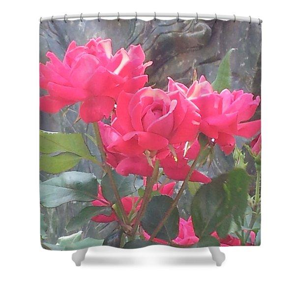 Austin Roses Shower Curtain