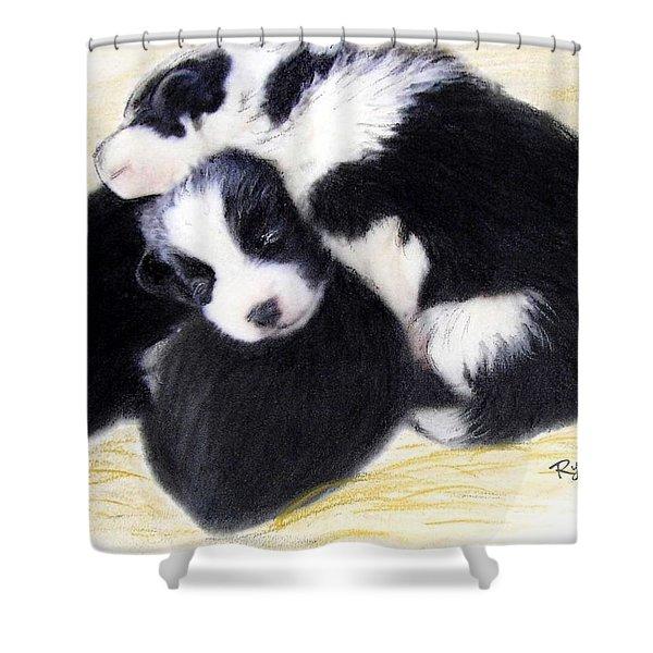 Australian Cattle Dog Puppies Shower Curtain