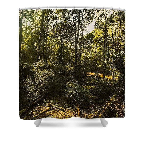 Australian Rainforest Landscape Shower Curtain