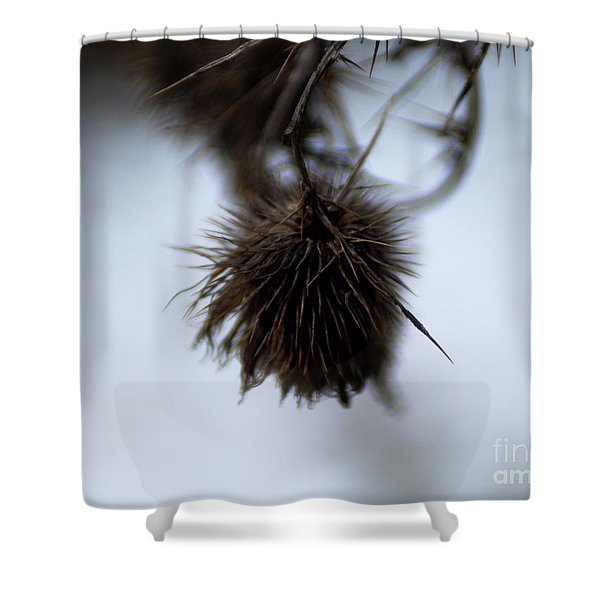 Autumn 2 Shower Curtain