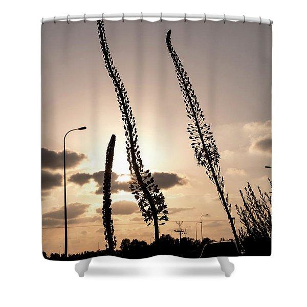 Autumn Alarm 02 Shower Curtain