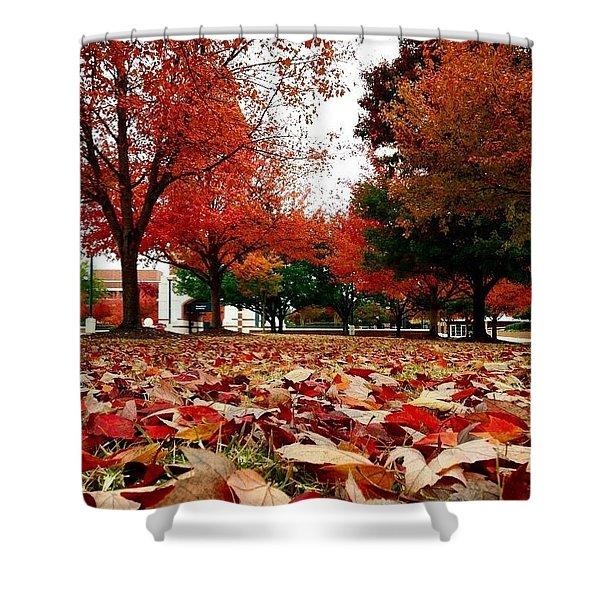 Autumn Art Shower Curtain