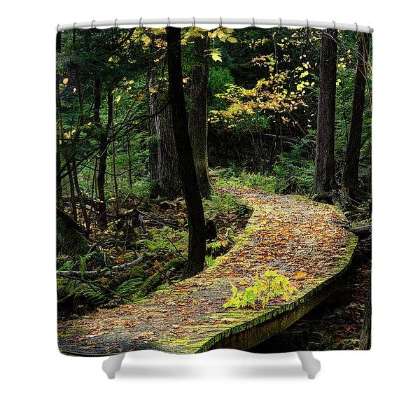 Autumn Boardwalk Shower Curtain
