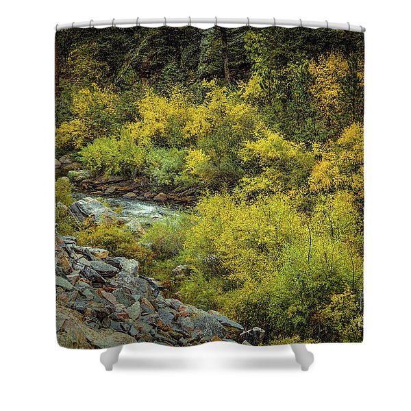 Autumn Bouquet Shower Curtain