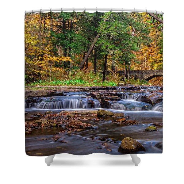 Autumn Cascades Shower Curtain