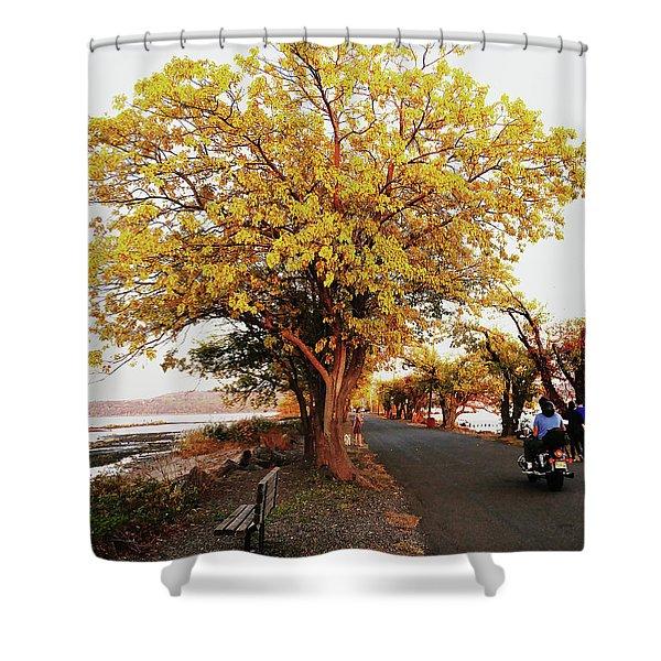 Autumn Causeway Shower Curtain