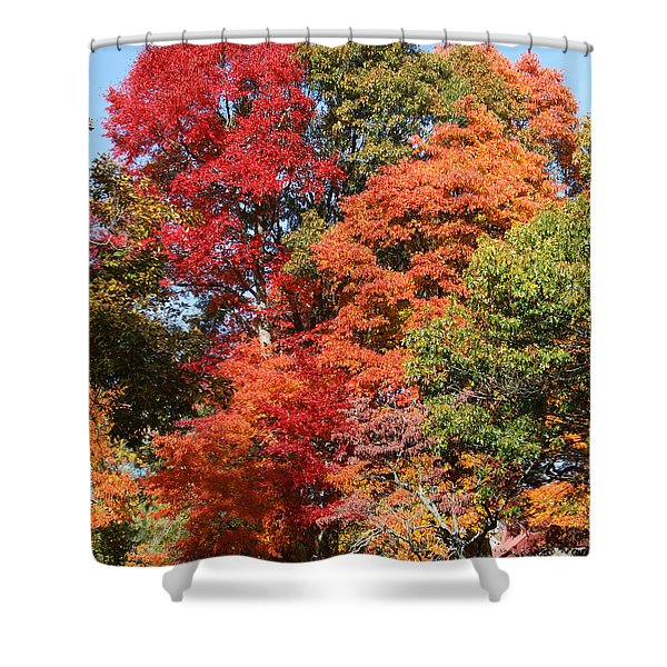 Shower Curtain featuring the photograph Autumn Color Spray by William Selander
