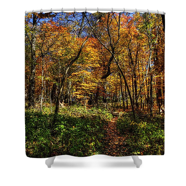 Autumn Forest Path At Johnson's Mound Shower Curtain