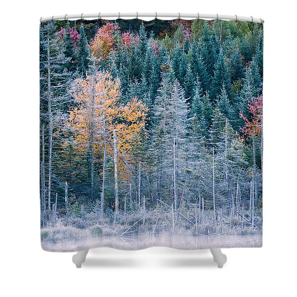 Shower Curtain featuring the photograph Autumn Frost by Jeff Sinon