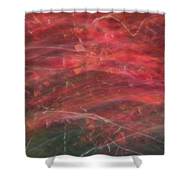 Autumn Graphics II Shower Curtain