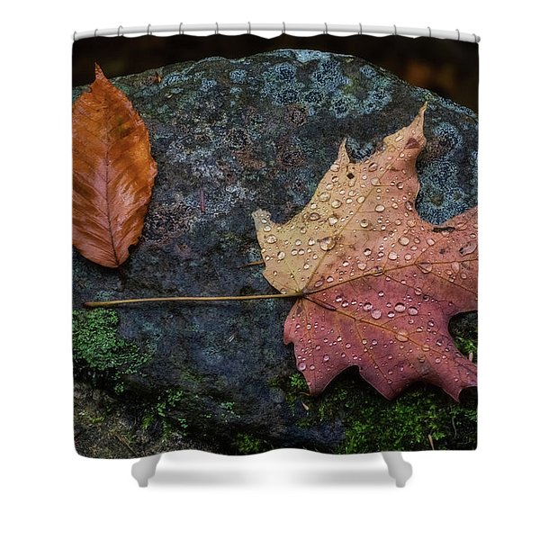 Shower Curtain featuring the photograph Autumn by Heather Kenward