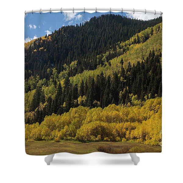 Autumn In Colorado Shower Curtain