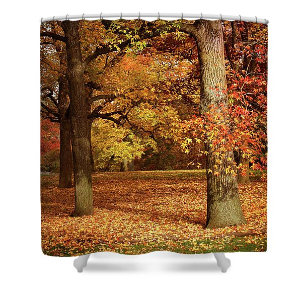 Autumn In The Orchard Shower Curtain