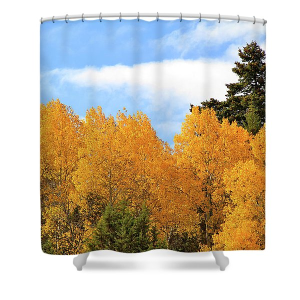 Autumn In The Owyhee Mountains Shower Curtain
