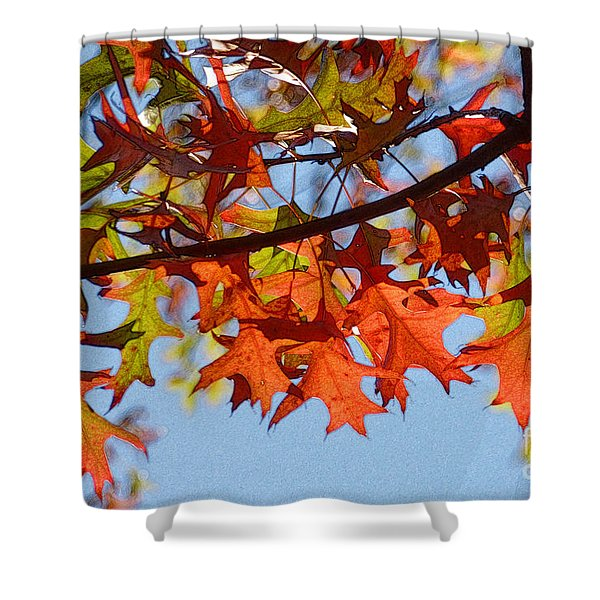 Autumn Leaves 16 Shower Curtain