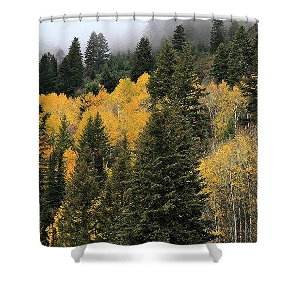 Autumn Mist, Owyhee Mountains Shower Curtain
