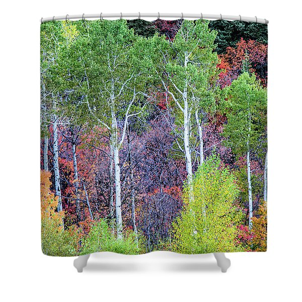 Autumn Mix Shower Curtain
