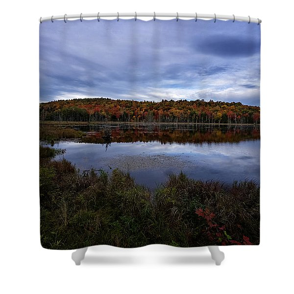 Shower Curtain featuring the photograph Autumn On North Pond Road by Tom Singleton