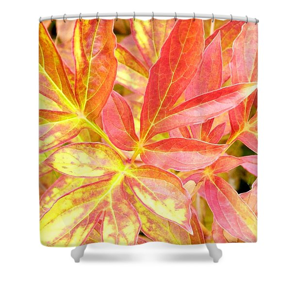 Autumn Peony Leaves Shower Curtain