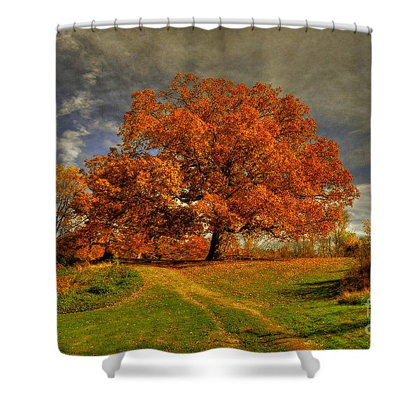 Autumn Picnic On The Hill Shower Curtain