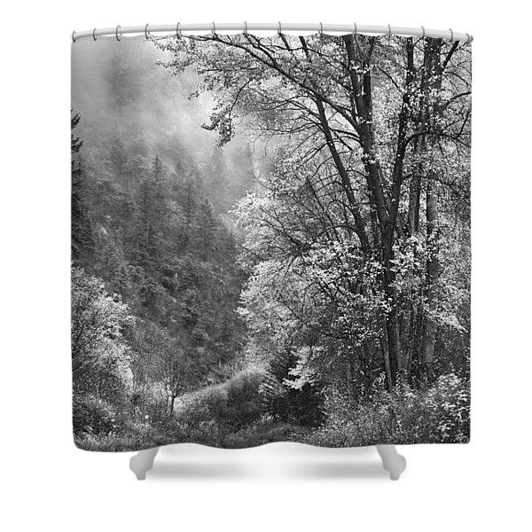 Autumn Sparkles On Green Mountain Shower Curtain