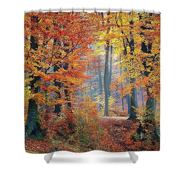 Autumn Splendour Shower Curtain