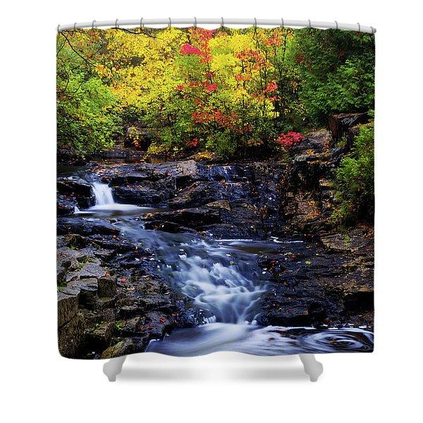 Autumn Swirls Shower Curtain