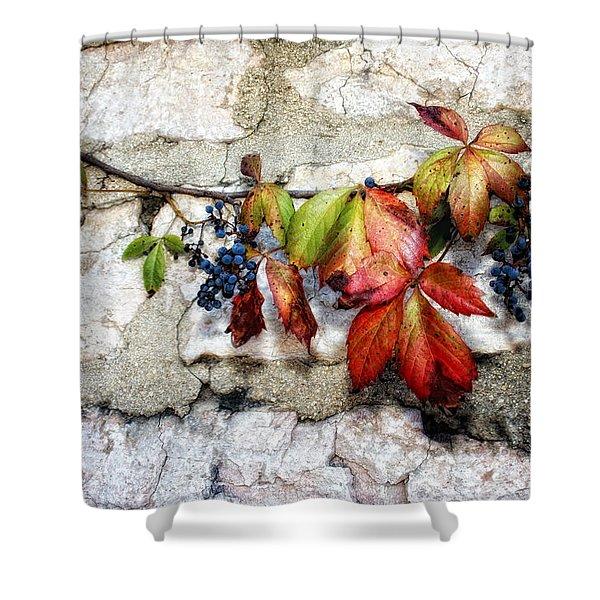 Autumn Vines Shower Curtain