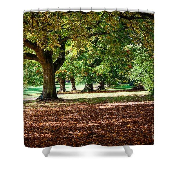 Autumn Walk In The Park Shower Curtain