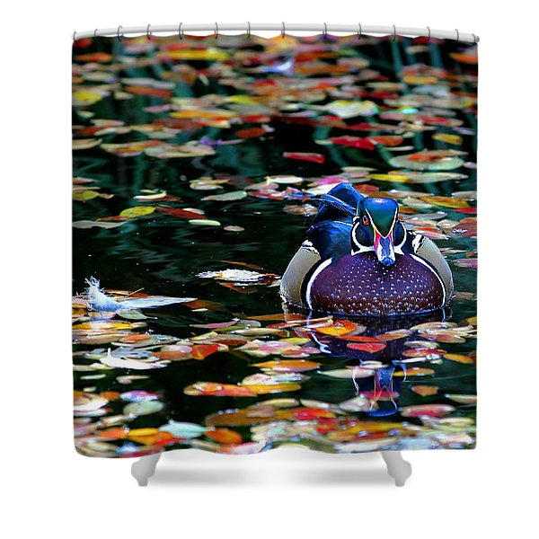 Autumn Wood Duck Shower Curtain