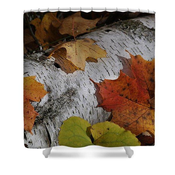 Autumnal Melange Shower Curtain