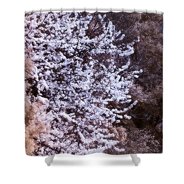 Autumnal Spring In London Shower Curtain