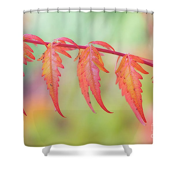 Autumnal Sumac Red Autumn Lace Leaves Shower Curtain