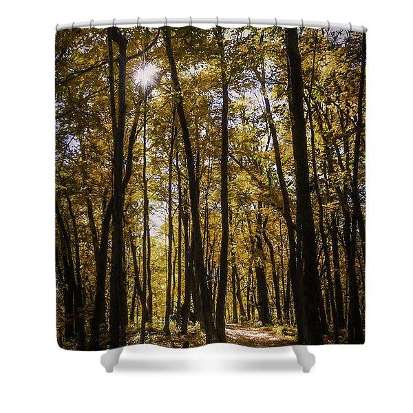 Autumns Fire Shower Curtain