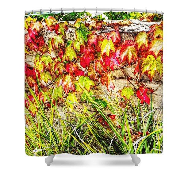 Autumn's Kiss Shower Curtain