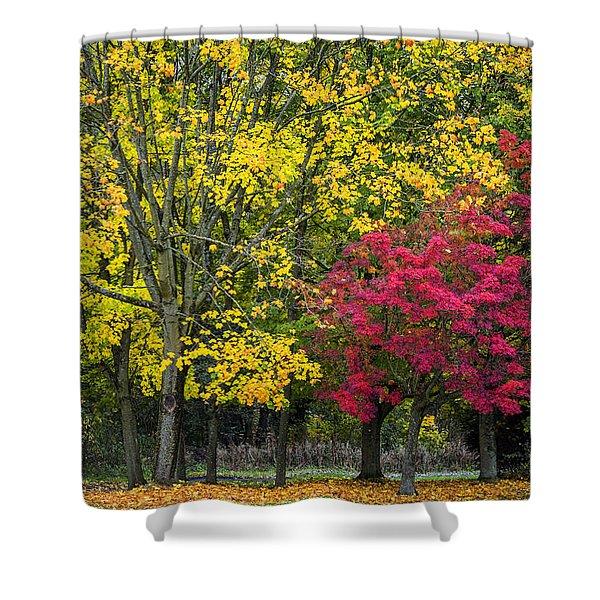 Autumn's Peak Shower Curtain